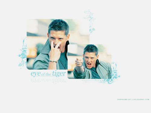 Jensen Eye Of The Tiger