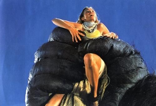 Kong 1976