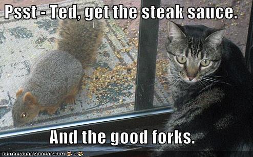 lol ネコ
