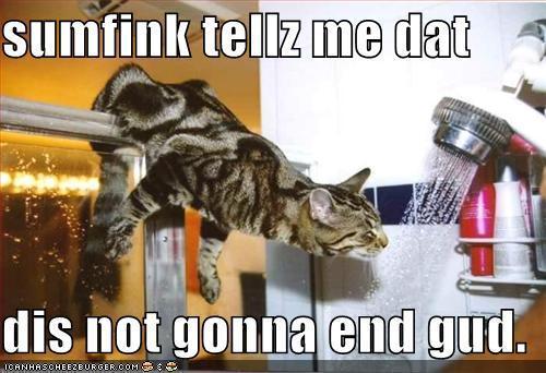 LOL – Liên minh huyền thoại mèo