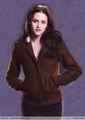 Promo photos - twilight-series photo