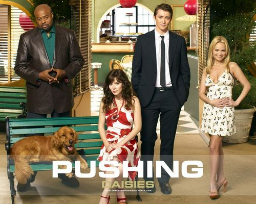 Pushing Daisies wallpaper called Pushing Daisies