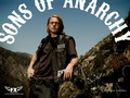 sons-of-anarchy - Jax Teller wallpaper