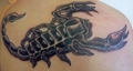 Scorpion - tattoos photo