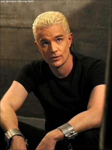 Buffy the Vampire Slayer wallpaper entitled Spike/James Marsters