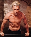 Spike/James Marsters - buffy-the-vampire-slayer photo