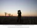 The Drover and Sarah - australia-a-baz-luhrmann-film photo