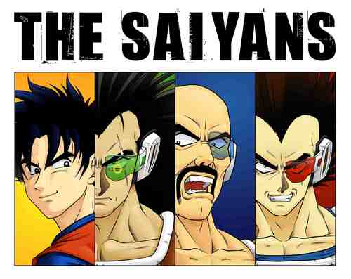 Dragon Ball Z images The Saiyans HD wallpaper and background photos