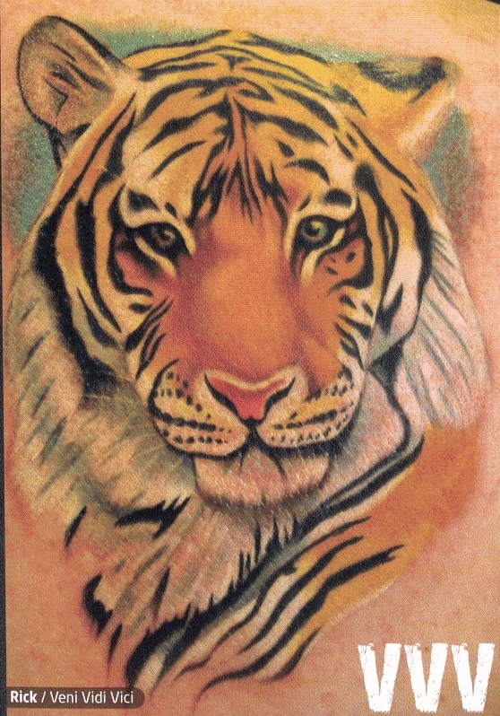 My dream started with me getting a tattoo of a tiger in black ink by this