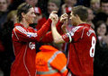 Torres And Gerrard - steven-gerrard-and-fernando-torres photo