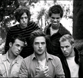Twilight Guys - twilight-series photo
