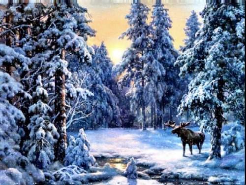 White 크리스마스 (2008)