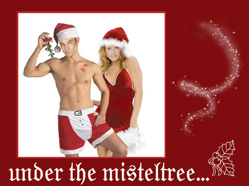 James Marsters wallpaper possibly with a hunk and skin called X-MAS James and Sarah Michelle Gellar