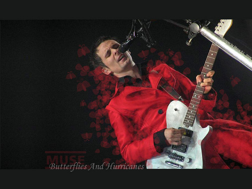 Matthew Bellamy wallpaper containing a guitarist and a show, concerto called matthew