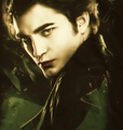 ºtwilightº - twilight-series photo