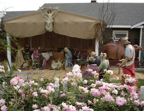 A Life Size Nativity