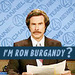 Anchorman Quote - anchorman icon