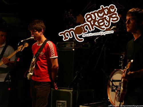 Arctic Monkeys karatasi la kupamba ukuta with a tamasha titled Arctic Monkeys