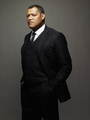 CSI Las Vegas - Laurence Fishburne - csi photo