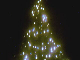 Chrismas cây lights