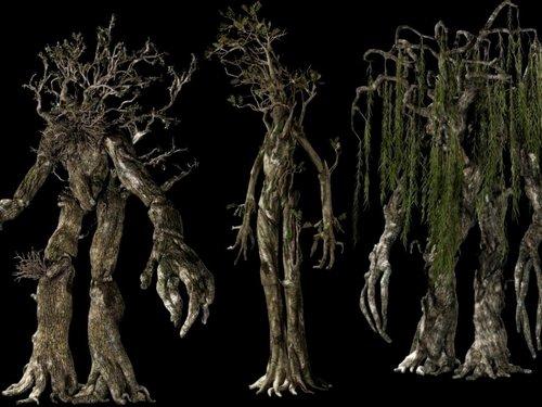 द लॉर्ड ऑफ द रिंग्स वॉलपेपर containing a live oak titled Ents