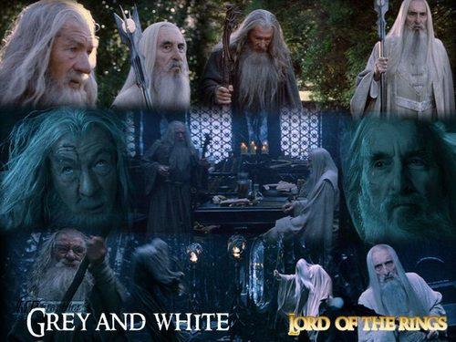 Gandalf and Saruman