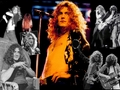 LED ZEPPELIN - rock-n-roll photo