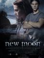New Moon #2