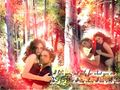 Twilight - fanpressions wallpaper