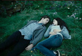 Twilight! - twilight-series photo