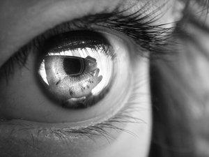 gray eye