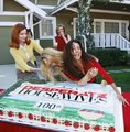 100th Episode Cake  - desperate-housewives photo