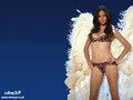 Adriana Lima - victorias-secret wallpaper