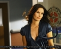 Courteney On Scrubs