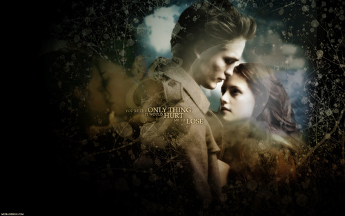 Edward & Bella 壁紙