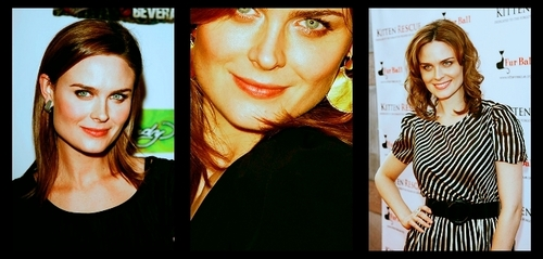 Emily Deschanel wallpaper with a portrait called Emily Deschanel