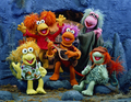 Fraggles - fraggle-rock photo