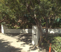 Hugh Laurie's House in Google Maps - house-md photo