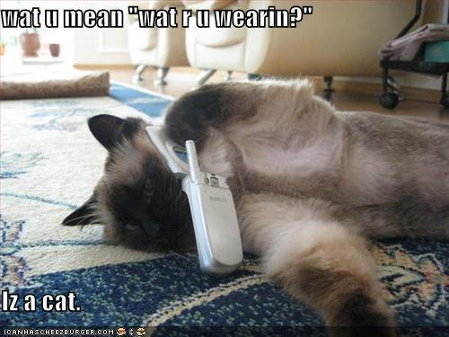 LOL Кошки