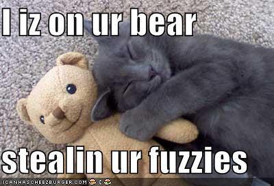 LOL Kucing