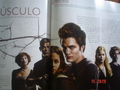 Twilight in Cinemania (mexican magazine)  - twilight-series photo