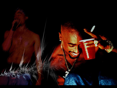 Tupac Shakur wallpaper possibly with a concert called 2Pac