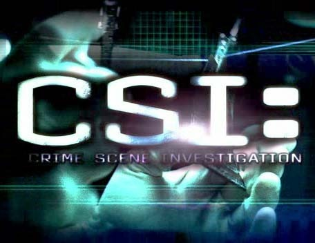 http://images2.fanpop.com/images/photos/3200000/CSI-logo-all-csis-3227233-456-352.jpg