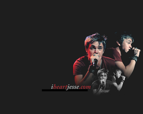 Jesse McCartney wallpaper with a concert and a guitarist entitled Jesse