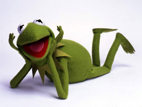 The Muppets wallpaper titled Kermit