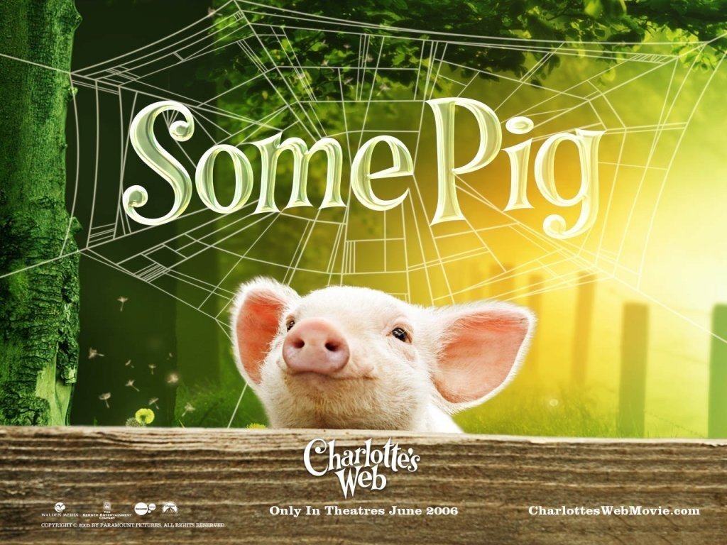 charlottes web images charlottes web hd wallpaper and background photos