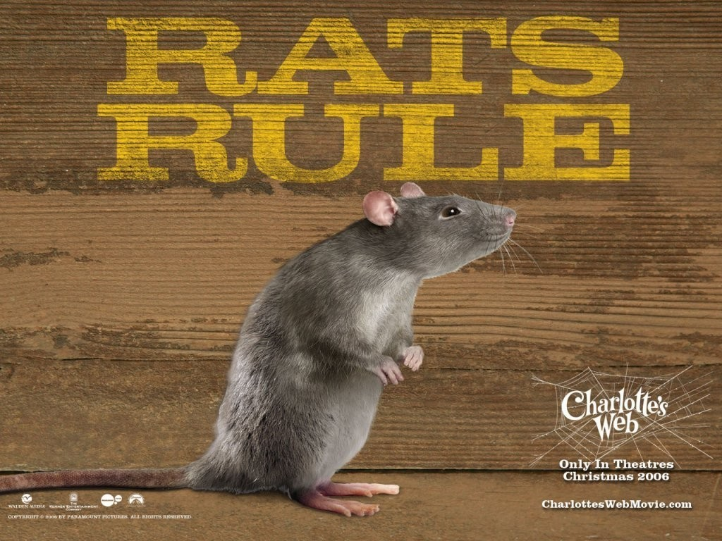 charolttes web Charlotte™ font family, 9 styles from $3500 by itc.