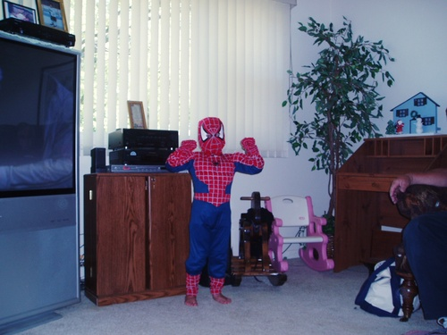 my sis as spider-man