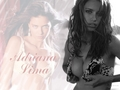 Adriana F. Lima - victorias-secret wallpaper