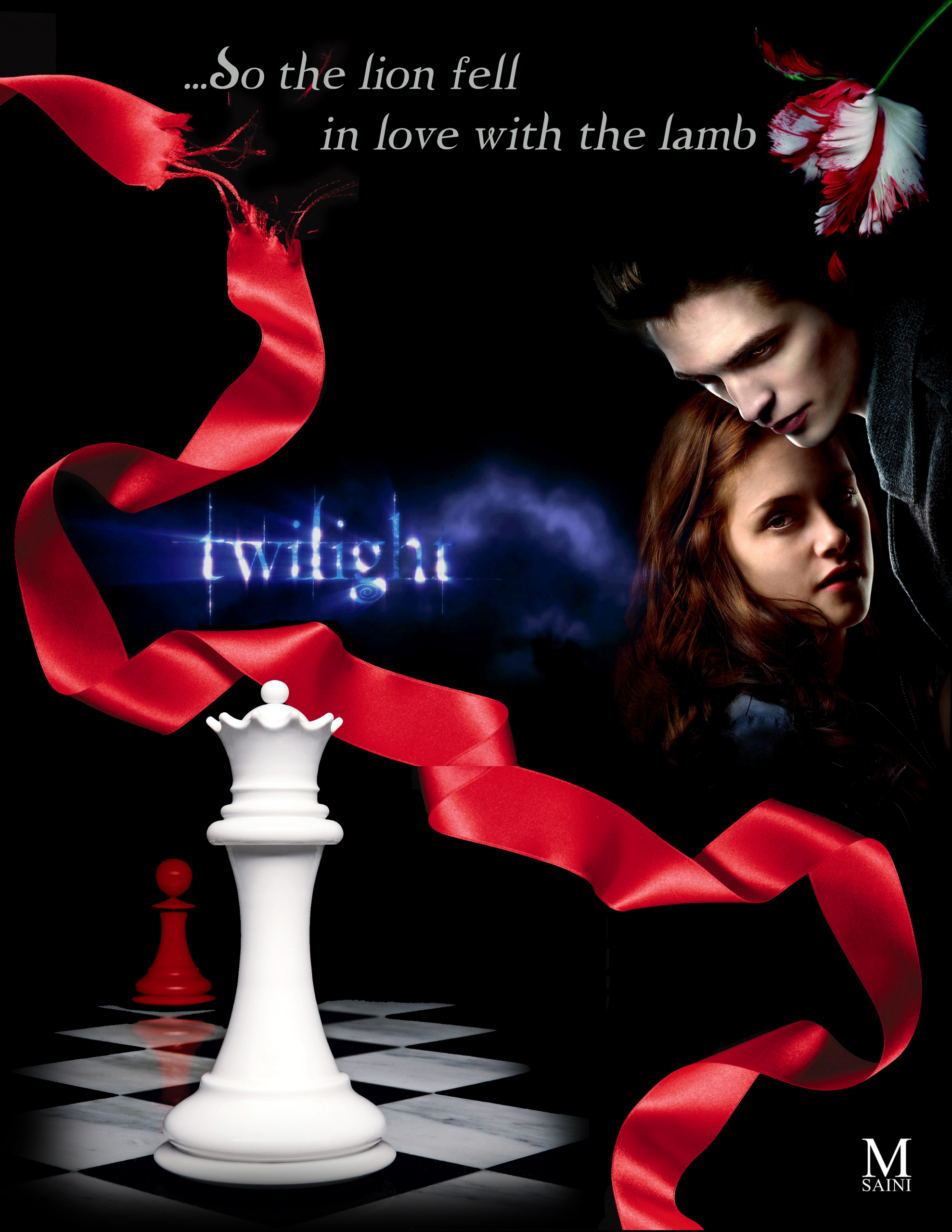 Twilight Series All Book Covers  large Twilight Book Covers Combined